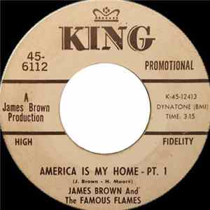James Brown & The Famous Flames - America Is My Home Download